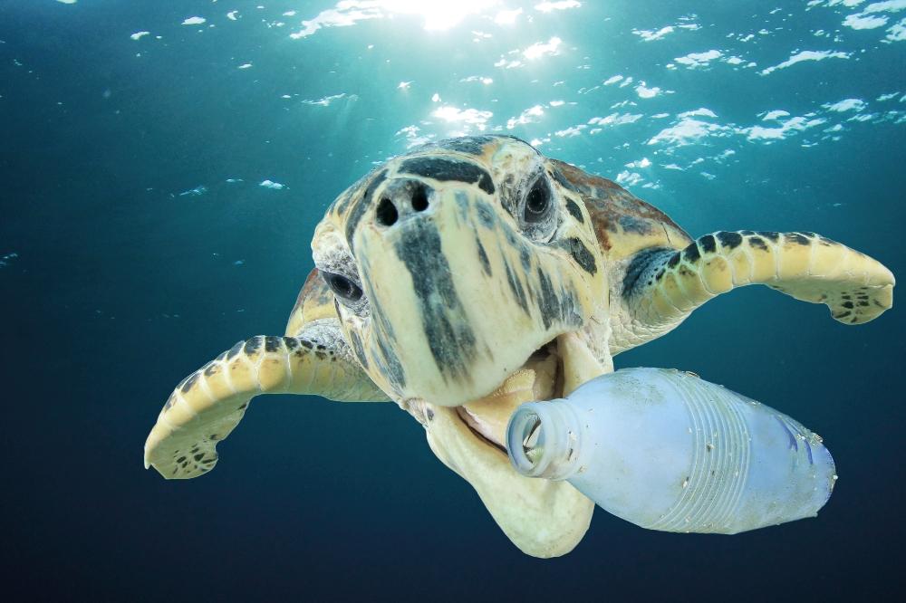 Tide Ocean verwandelt Meeresplastik in Uhren