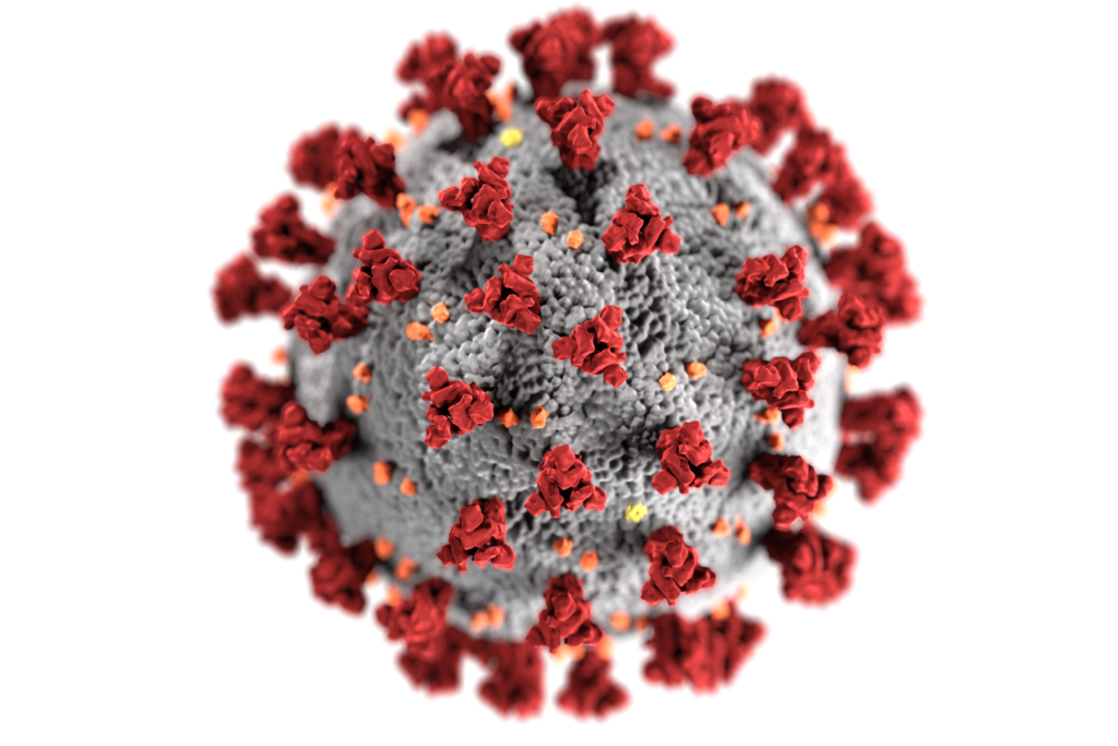Roche testing for coronavirus and flu simultaneously